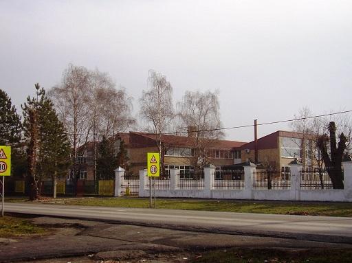osnovna škola vuk karadžić bačka palanka