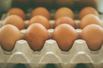 Zašto bi trebalo redovno jesti jaja?
