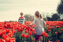 Kada dete stiče zdrave navike?