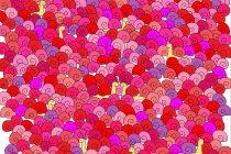 Ljubavna skrivalica: Pronađite srce među puževima!