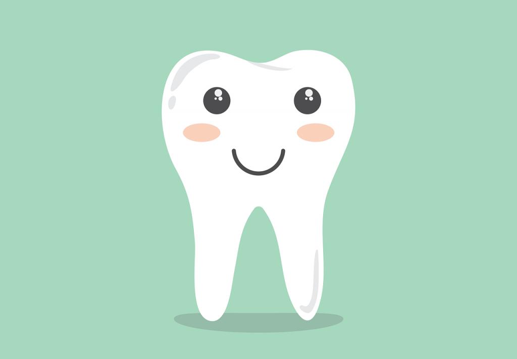 mlecni zub