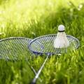 reketi badminton
