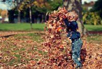 Deca koja provode više vremena u prirodi imaju bolje mentalno zdravlje
