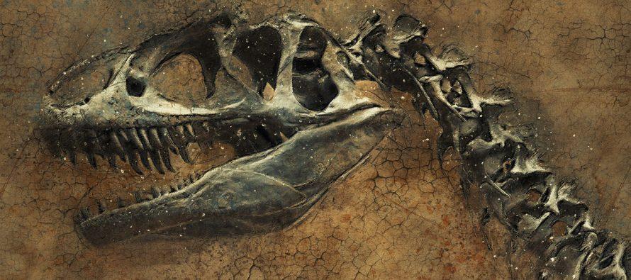 Otkriven fosil najčudnijeg dinosaurusa