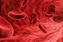 Šta su krvne grupe?