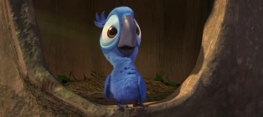 Papagaj koji je bio inspiracija za Rija više ne postoji?
