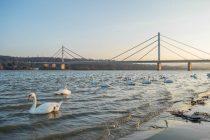 6 zanimljivosti o Dunavu