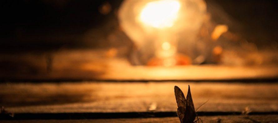 Zašto insekte privlači svetlo?