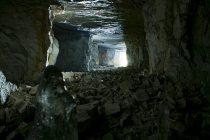 Otkrivene životinjske vrste zatočene u pećini još od ledenog doba!