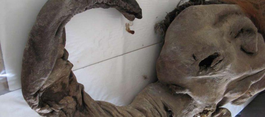 Naučnici na korak da vrate mamute u život?