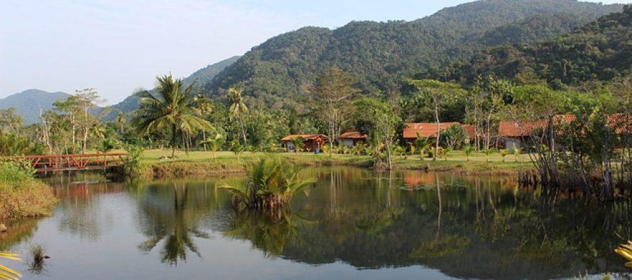 10 neverovatnih činjenica o Amazonu