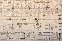 Zanimljive činjenice o hijeroglifima