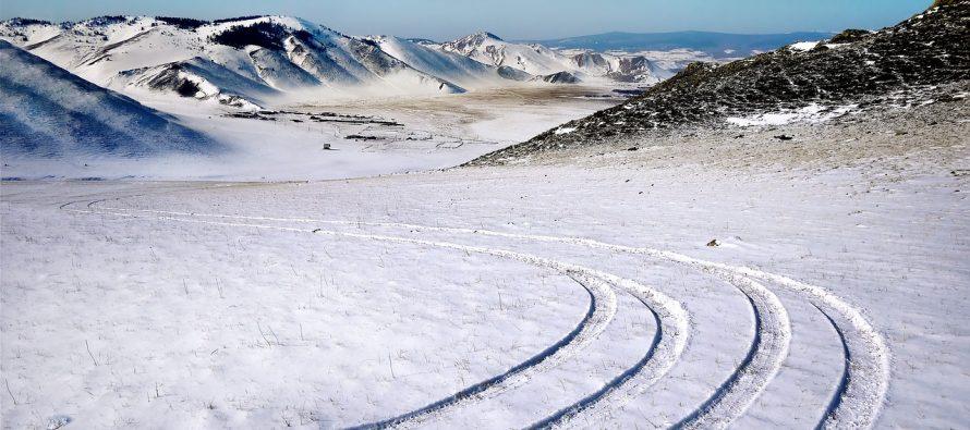 Otkriveno 18.000 staro kuče u Sibiru