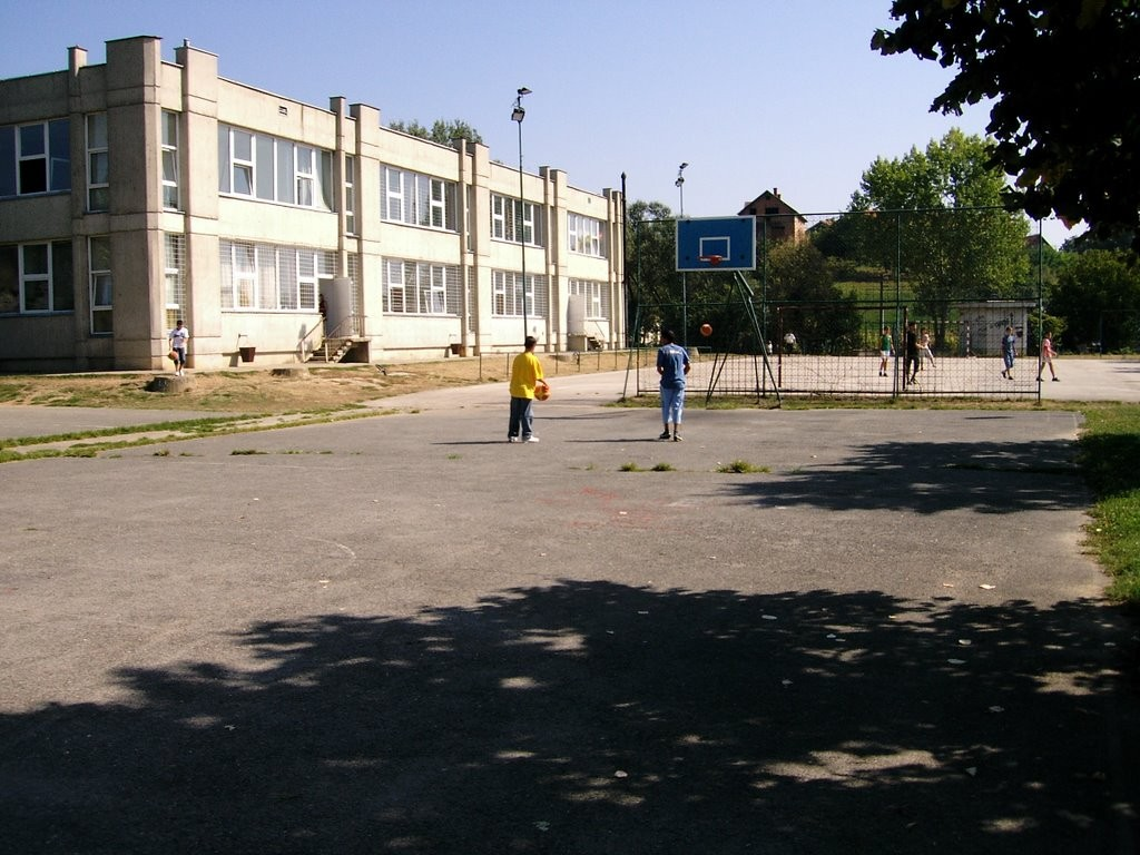 osnovna skola mica stojkovic umcari slika skole