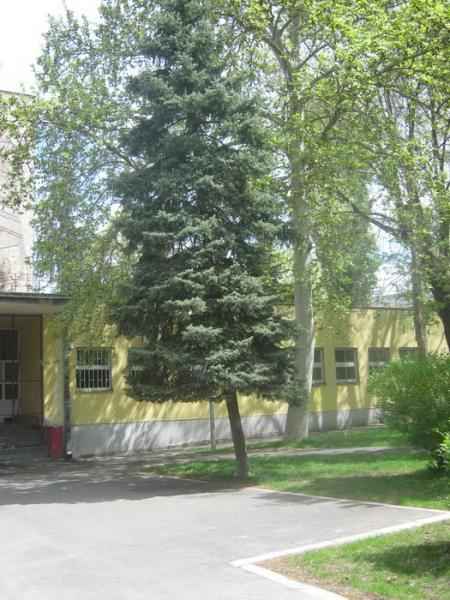 osnovna skola oslobodioci beograda slika skole