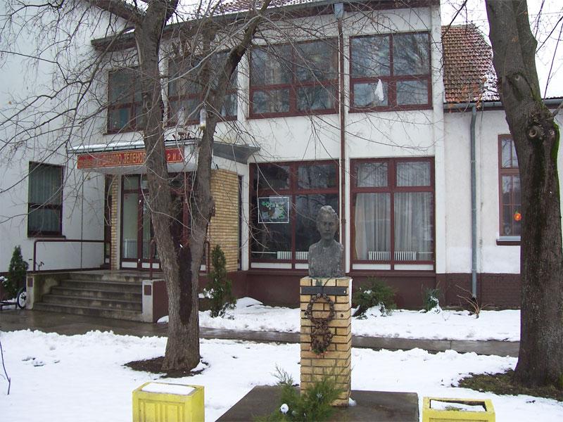 osnovna skola danilo zelenovic sirig slika skole