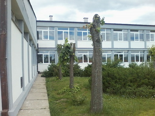 osnovna skola 9 maj reljan slika skole