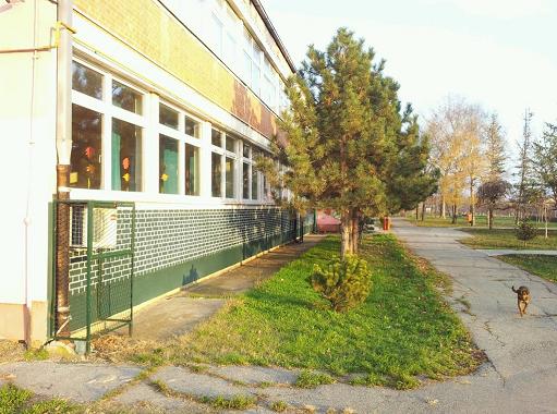 osnovna skola olga petrov banatski brestovac slika skole