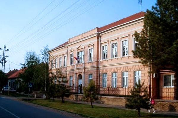 osnovna skola slobodan bajic paja slika skole