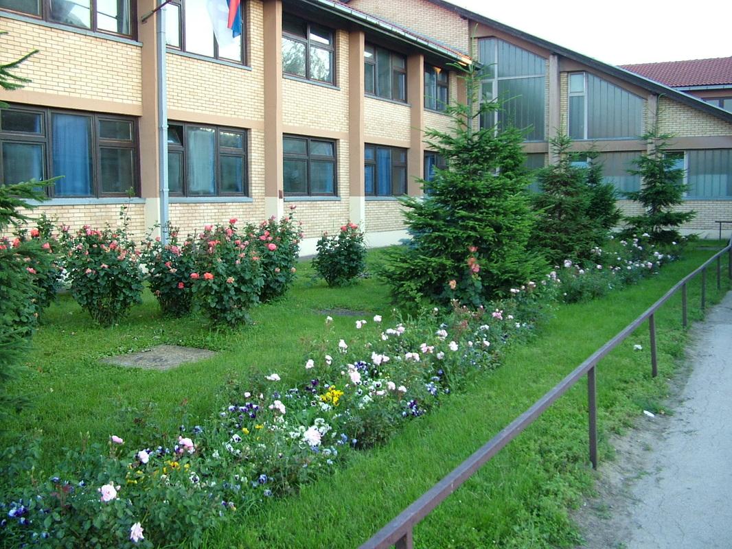 osnovna skola sveti sava pancevo slika skole