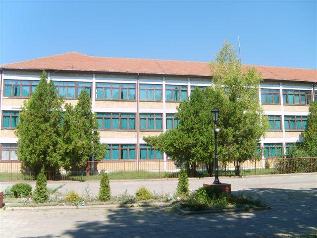 osnovna skola zarko zrenjanin kacarevo slika skole
