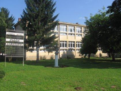 osnovna skola radoje domanovic bosnjace slika skole