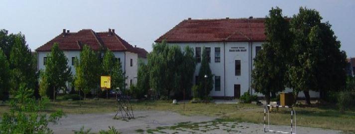 osnovna skola pavle ilic veljko prahovo