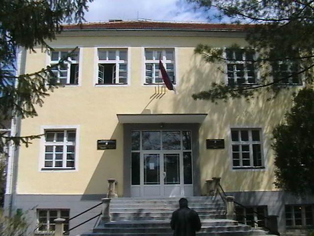 osnovna skola Stana Bačanin Lešak