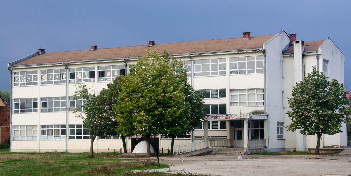 osnovna skola mladen markovic vitina