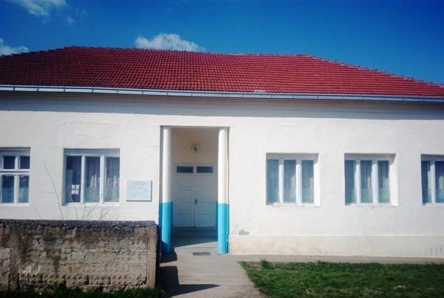 osnovna skola nikola skobaljic veliko trnjane fotografija skole