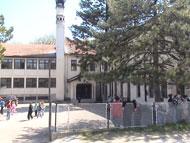 osnovna skola stanoje miljkovic brestovac