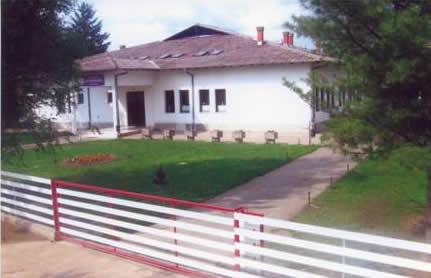 osnovna skola bane milenkovic novo selo