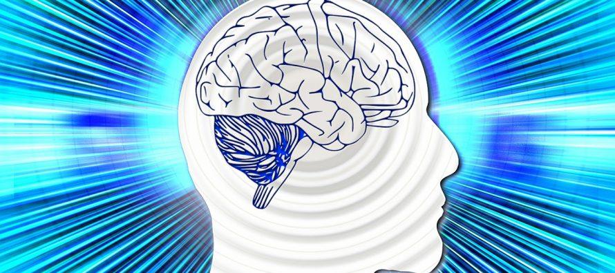 Kako stres utiče na mozak?