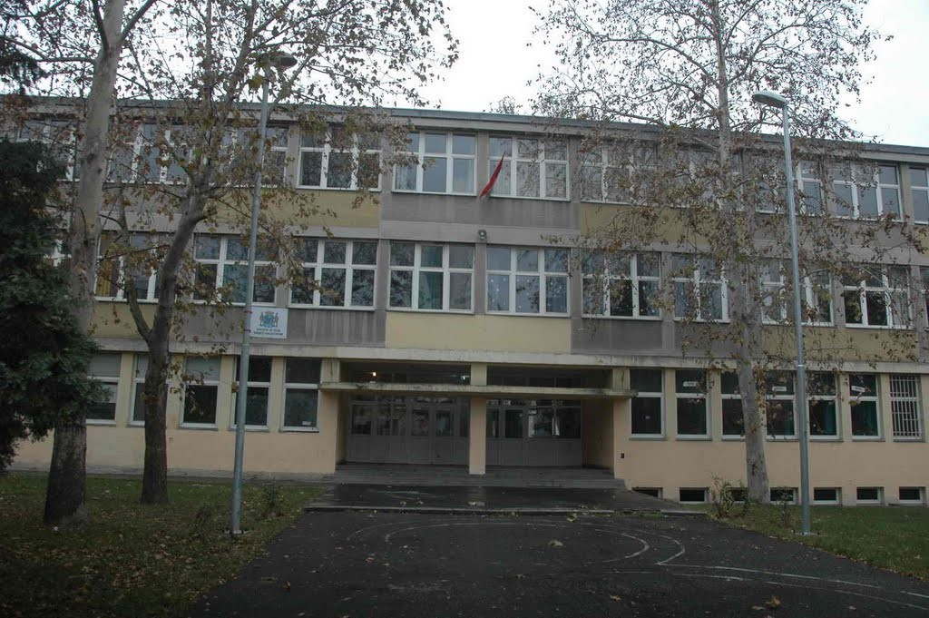 osnovna-skola-sutjeska-zemun-slika-skole