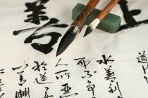 Novi Sad: Kurs početnog kineskog za decu