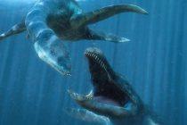 Otkriven najstariji pleziosaur na planeti