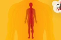 Zašto su nam tela topla?