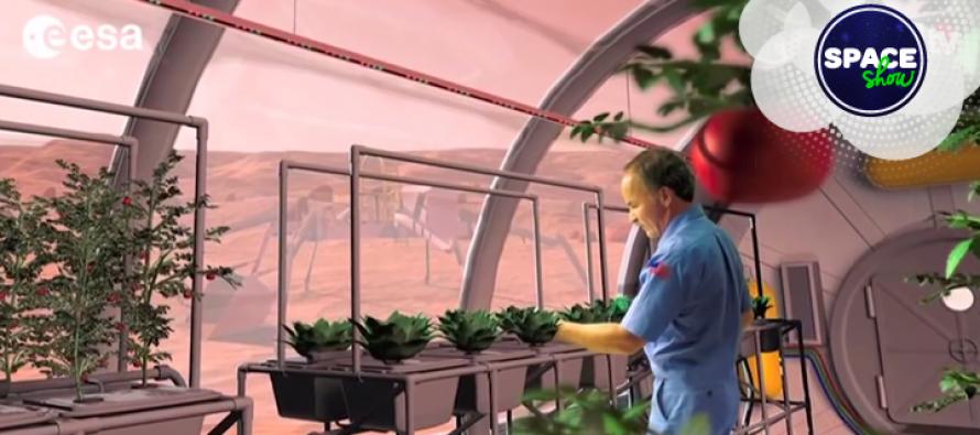 Postoje li crvi u svemiru i da li je moguće posaditi biljke na Mesecu?