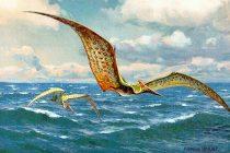 Da li su ptice direktni potomci dinosaurusa?