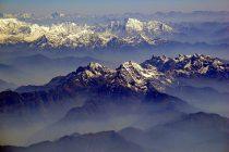 """Crveni med"" sa Himalaja"